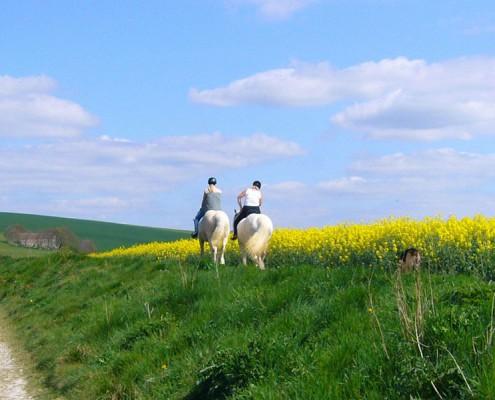 Ruta paseo a caballo con niños