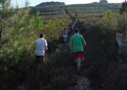 Trekking en la Sierra de la Culebra zamora