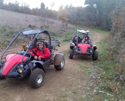 Rutas en buggy Zamora