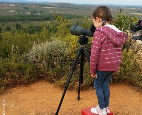 Iniciación a la observación de naturaleza