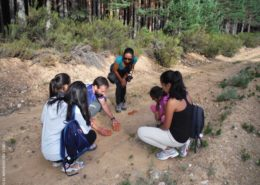 Taller de huellas en la Sierra de la Culebra