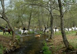 sanabria rutas a caballo