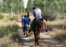 amino de santiago a caballo