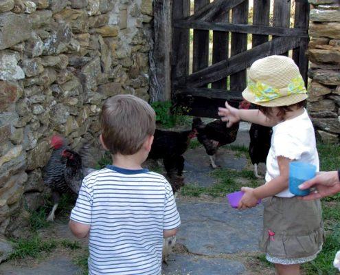 Niños, junto a los animales de la granja