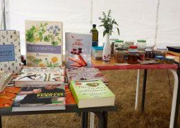 uso medicinal de las plantas