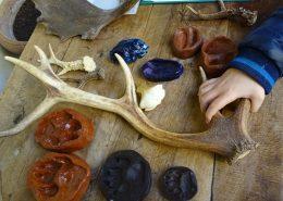 actividades para niños sobre naturaleza