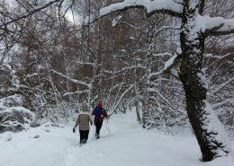 Trekking en la nieve zamora