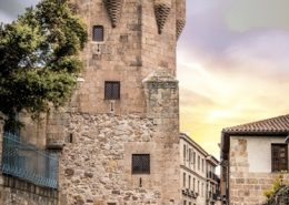 Visita guiada Salamanca Torre Clavero