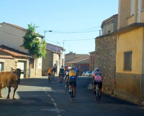 estancia para ciclistas profesionales