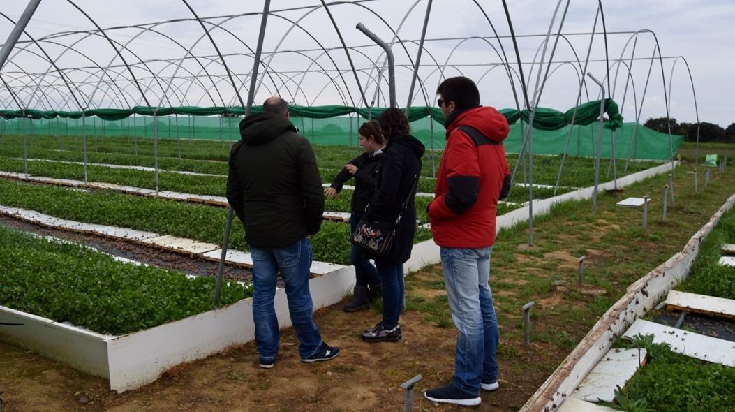 visitar granja de caracoles