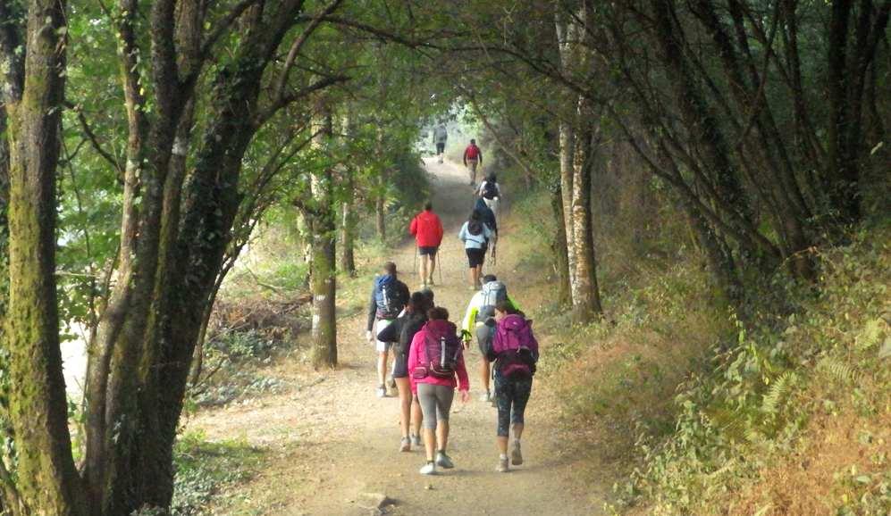 el camino de santiago con guia acompañante