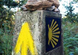 el camino de santiago guiado
