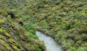 Ponte dos mineiros
