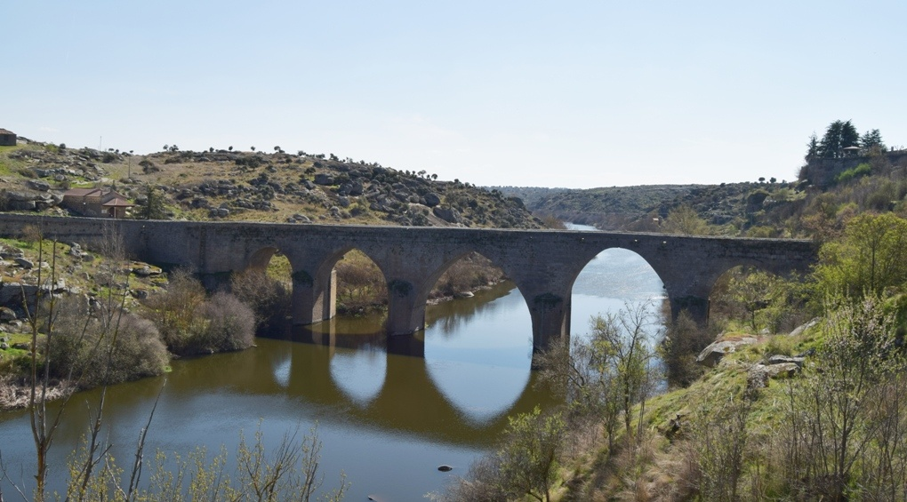 puente ledesma