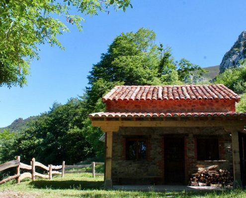 cabañas-en-el-bosque-asturias