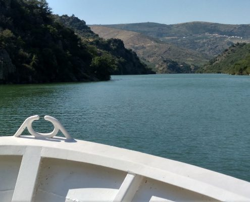 crucero fluvial vilvestre