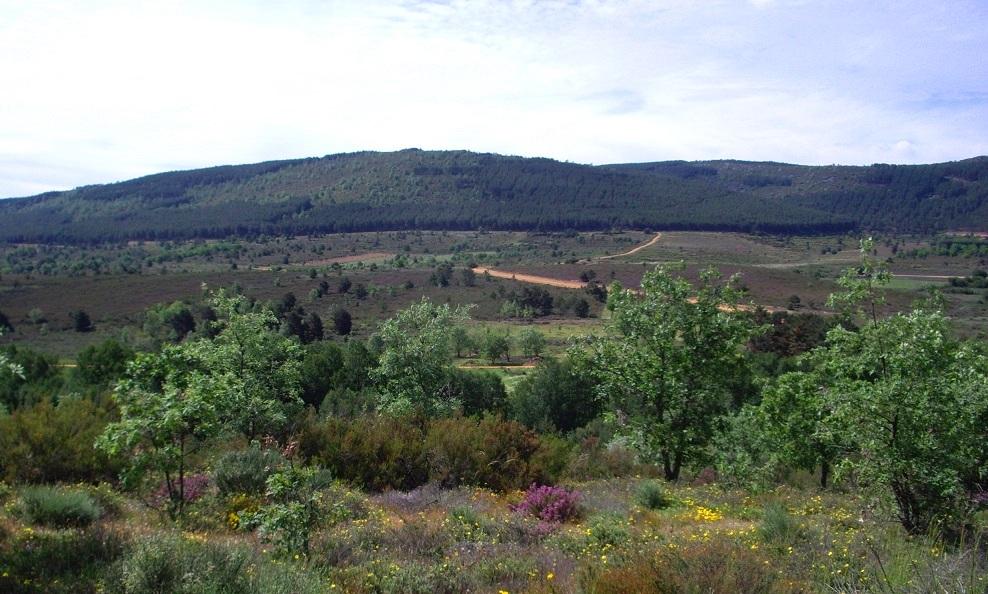 sierra de la culebra paisaje