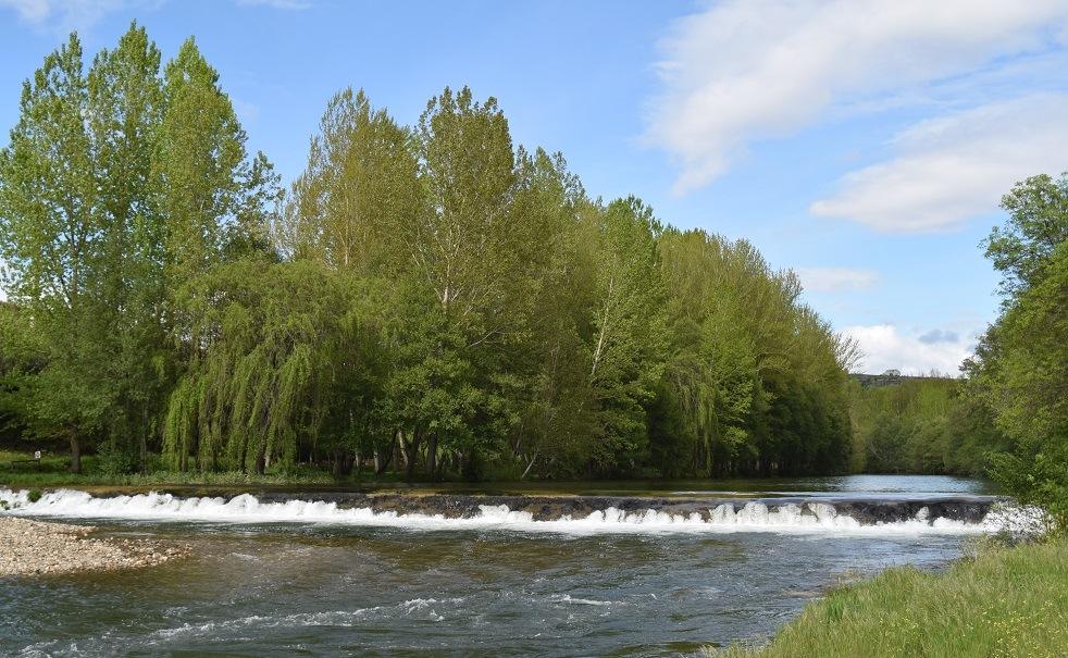 rio manzanas