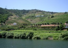tour valle duero portugal