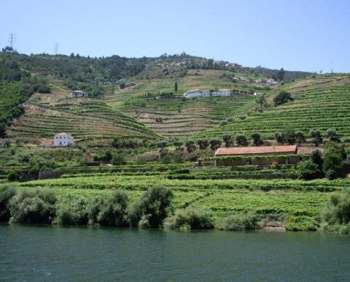 tour valle duero portugal